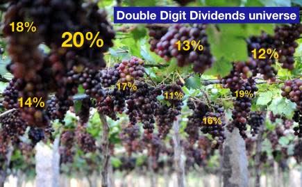 Double Digit Dividends universe